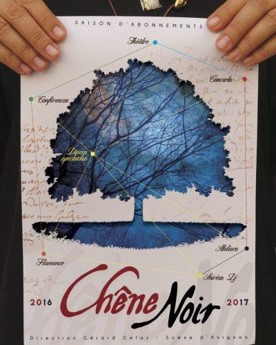 programme-2016-2017 Theâtre du Chêne Noir