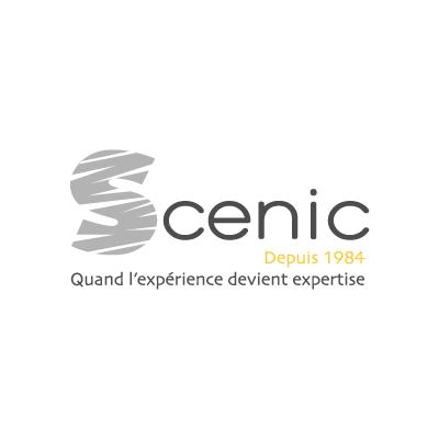 logo_scenic_S_gris