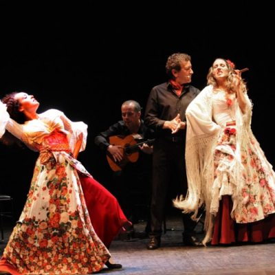 Carmen flamenco photo 2 - Copie