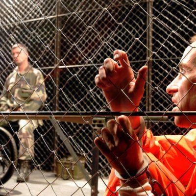 Guantananour Création Chêne Noir