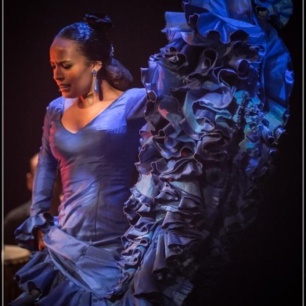 Flamenco au Theatre du Chêne Noir