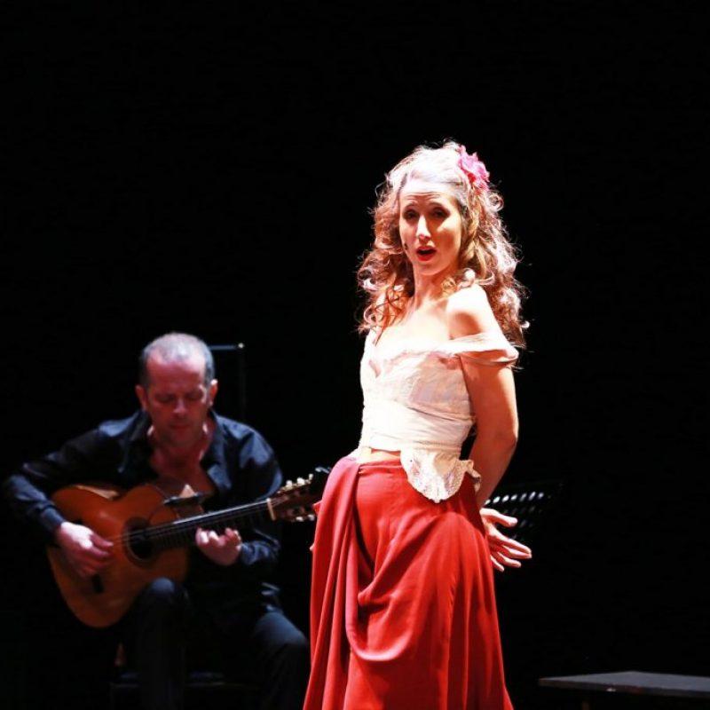 carmen_flamencoCrédit Xavier_Cantat